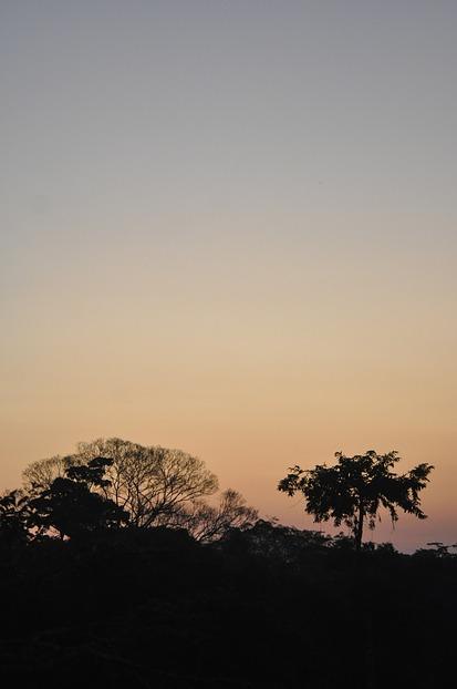 Abendstimmung im Amazonas