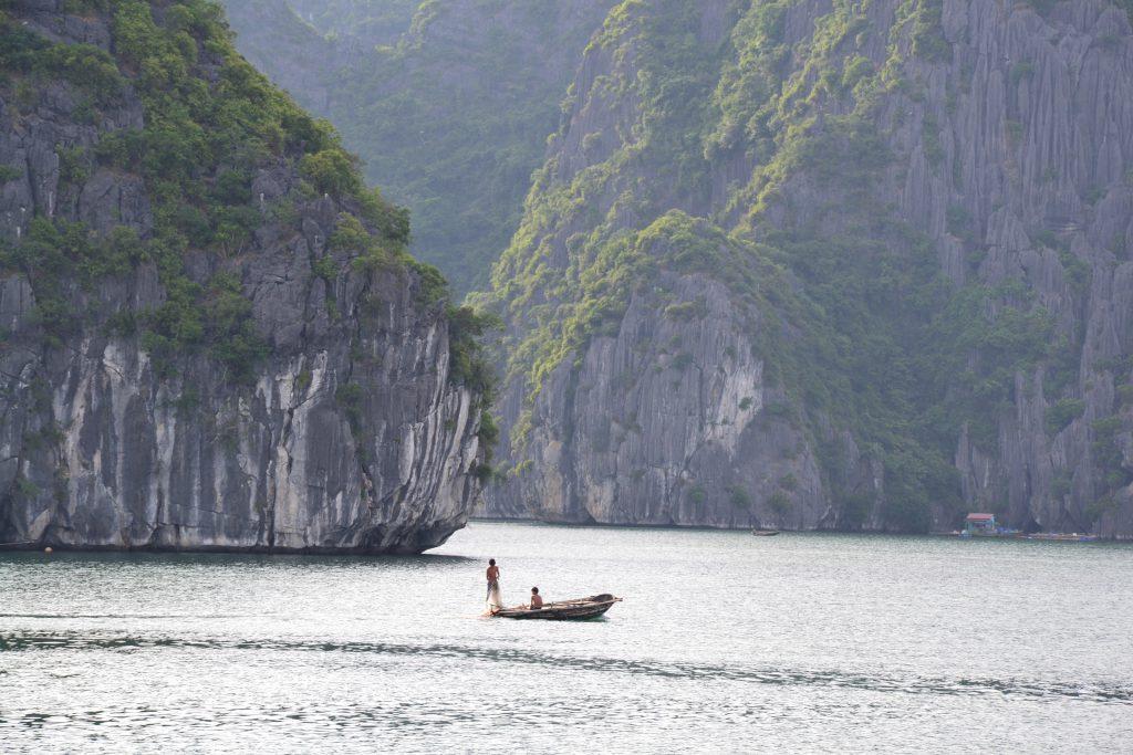 Landschaft der Halongbucht in Vietnam
