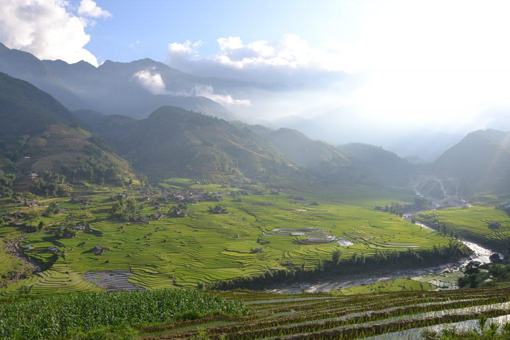 Landschaft in Sapa, Reisterrassen