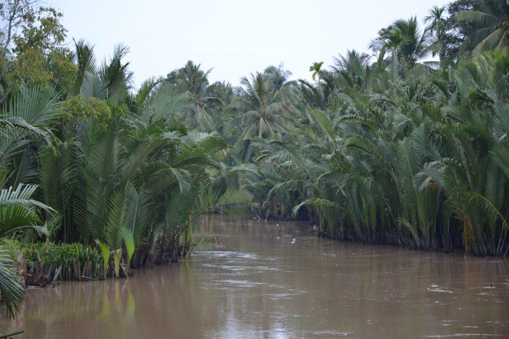 Foto aus dem Mekong Delta