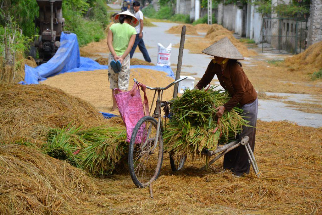 Straßenszene in Nin Binh, Vietnam