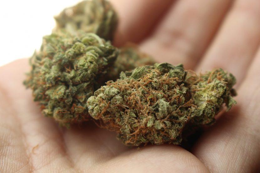 Cannabis Rick Simpson - CBD Öl