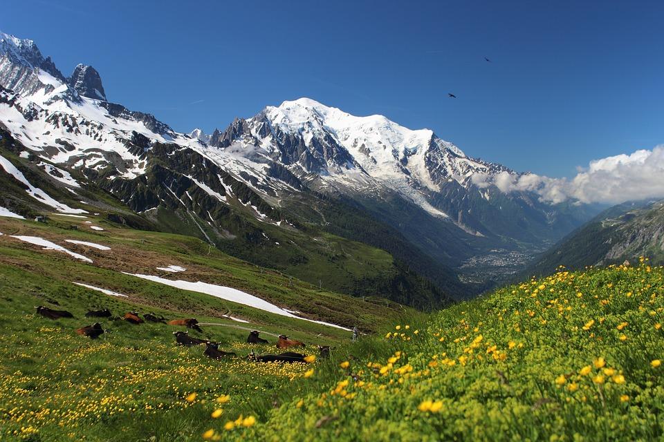 Ultramarathon du Mont Blanc